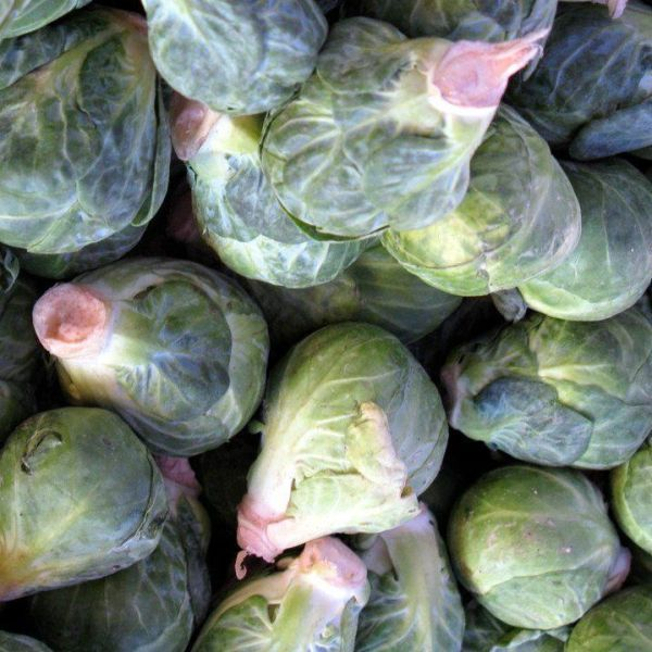 FROZEN BRUSSELS-SPROUTS